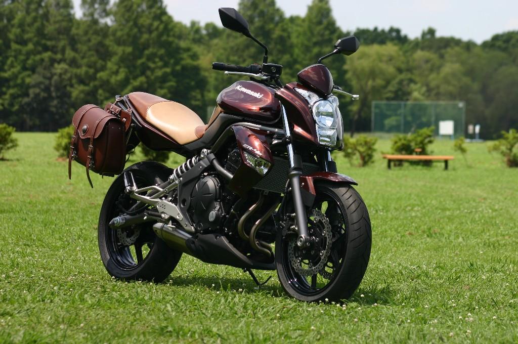 Kawasaki ER-4N