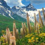 Навстречу мечте: топ-5 красивейших стран мира