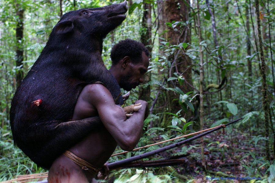 Охотник из племени караваи новая Гвинея